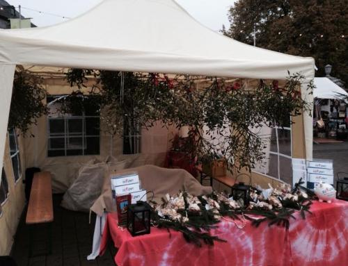 Mistelzweige für Kinder im Rheingau (29.11.2014)